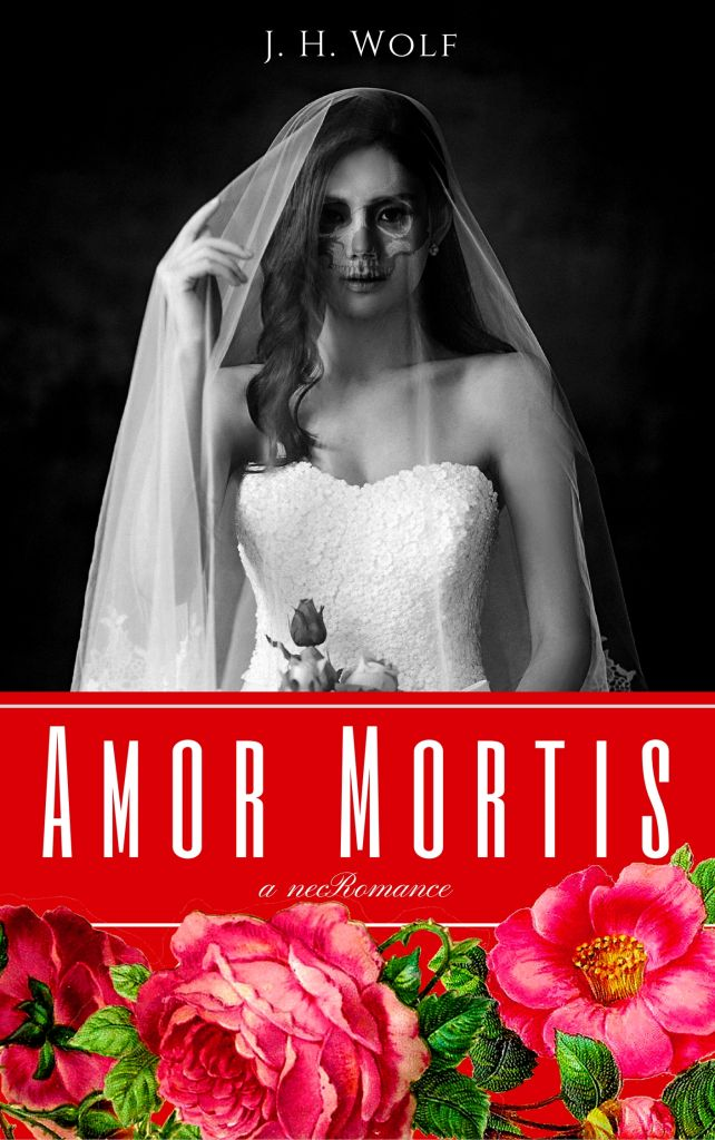 nanowrimo novel amor mortis